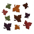 Autumn Leaves - Maple Leaves