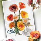 Terial Poppies  Pattern & Instructions (30% OFF)